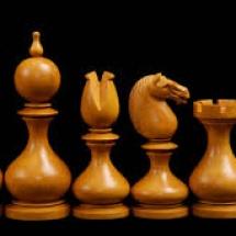 שחמט עץ