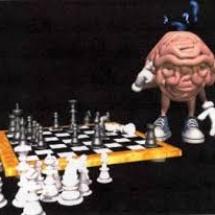 שחמט 33